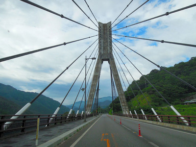 yoneda.ume2.2011.8.14.jpg